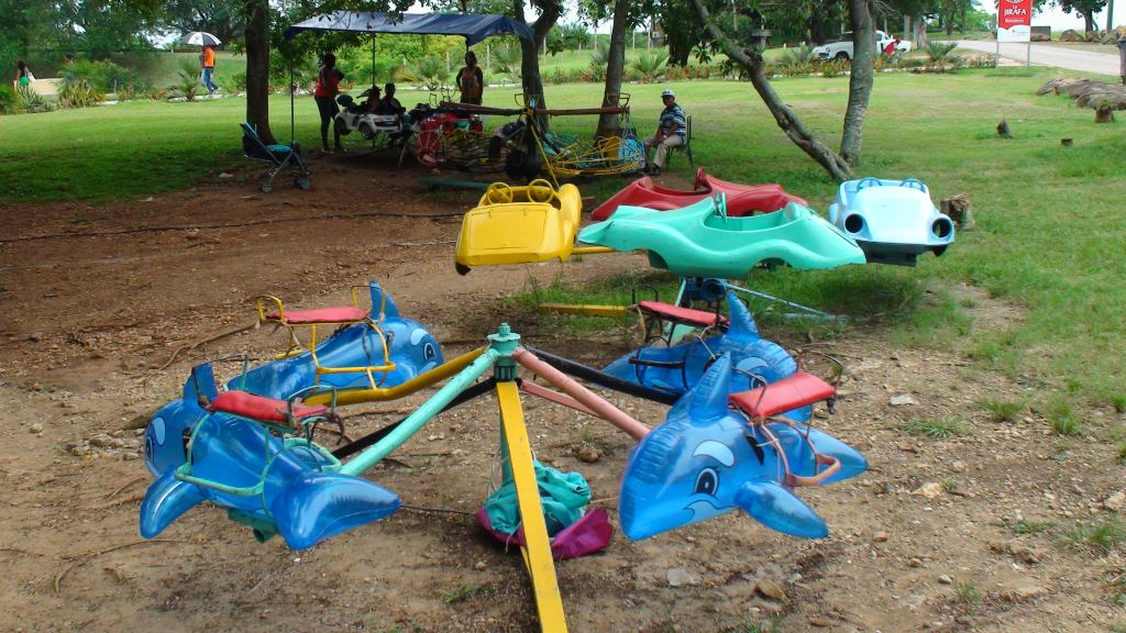 carousel zoo dolphin