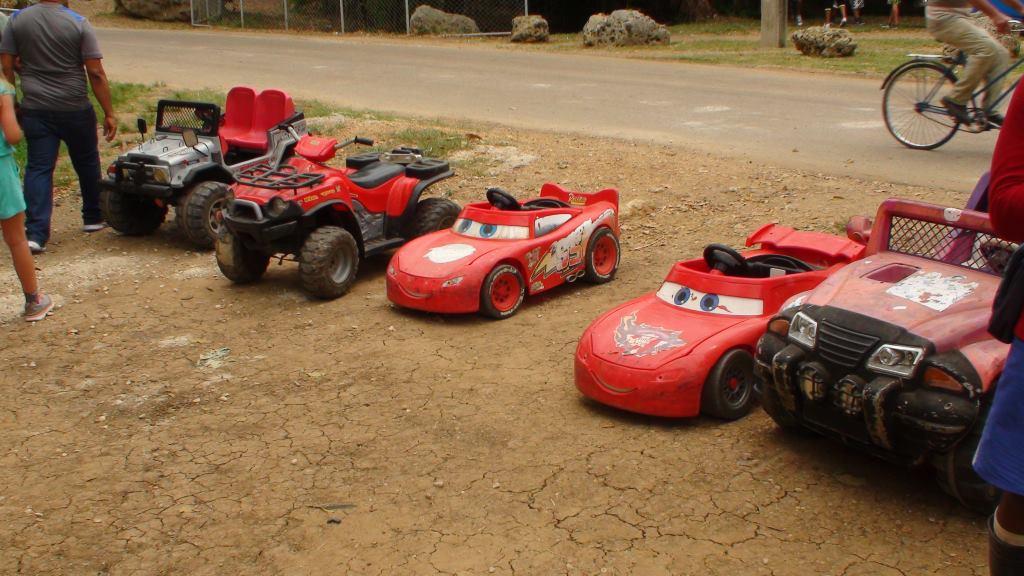 cars zoo