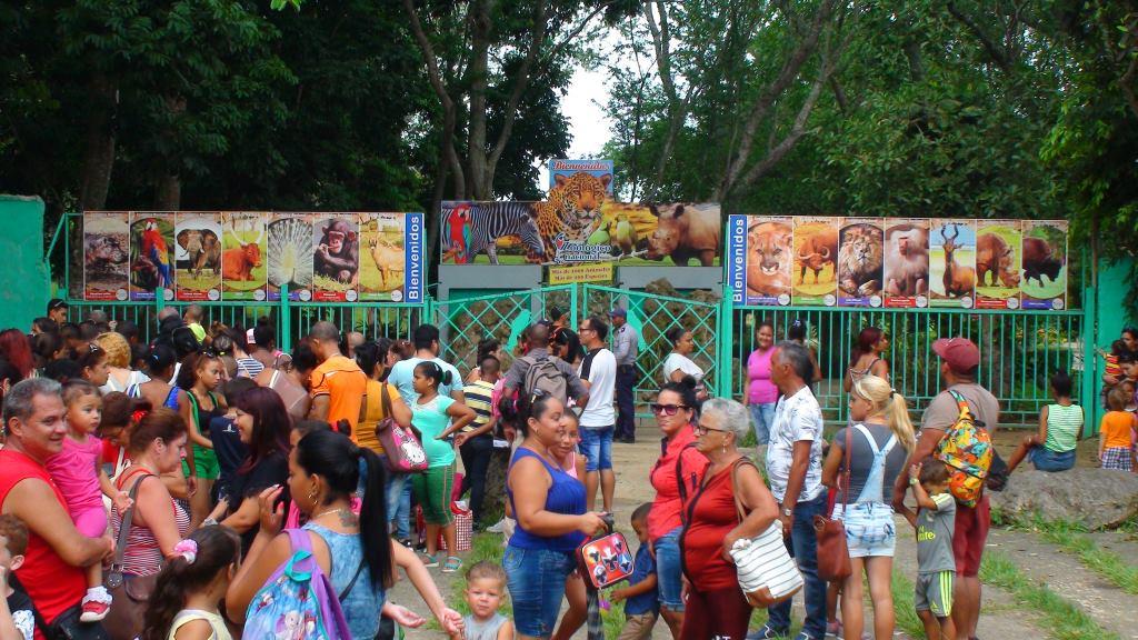 havana zoo open times